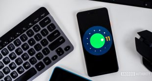 When will your phone get the Android 11 update? (Updated September 15)
