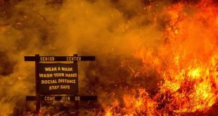 Murder Cover-Up: Man Allegedly Set Deadly Wildfire to Hide His Crime