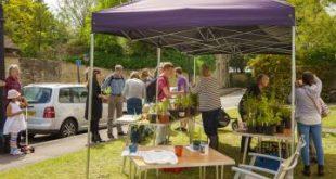 Take a peek at Old Headington's lovely gardens