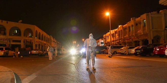 Sterilisation drive: Abu Dhabi to activate radars, impose fines